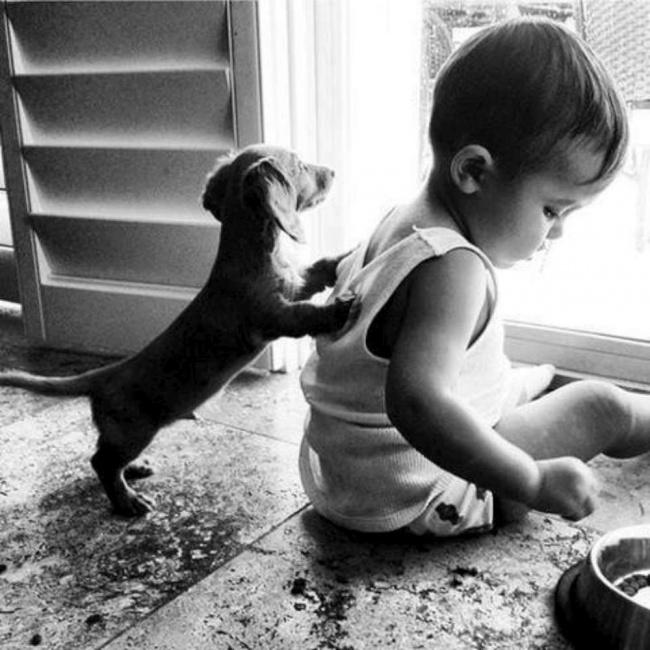 Puppy&kid